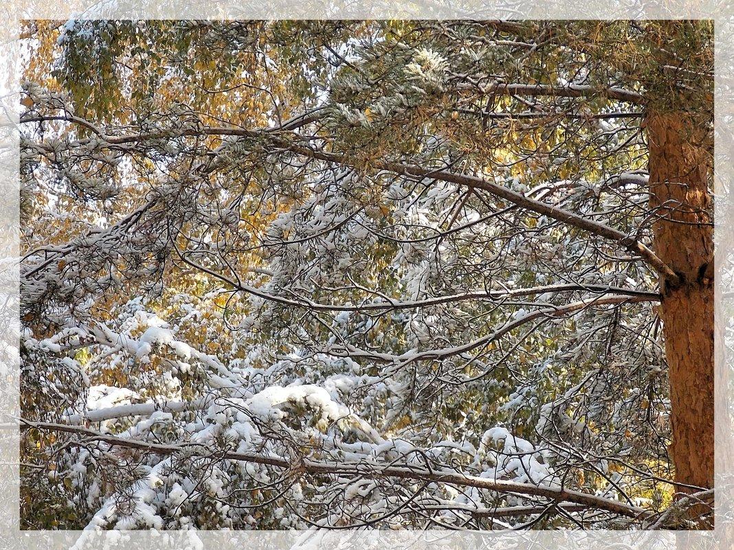 Любит сюрпризы зима - Domna Kuznechic