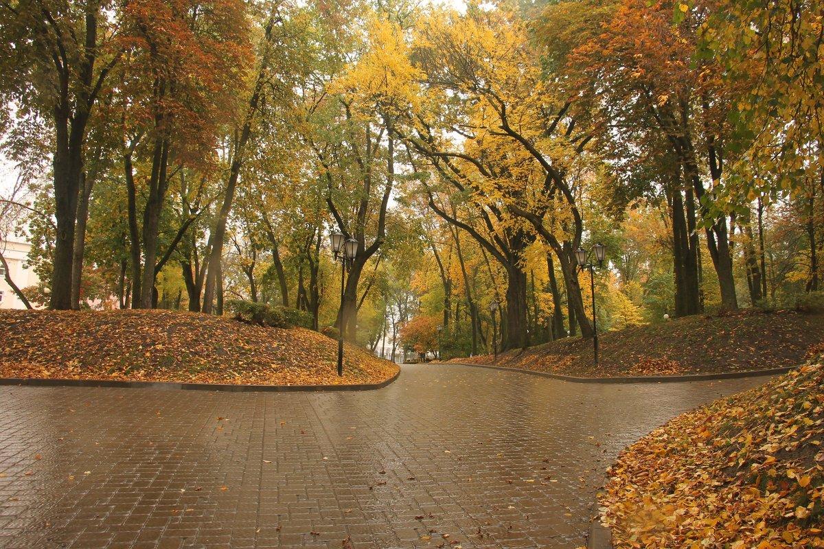 осень - Владимир Зырянов