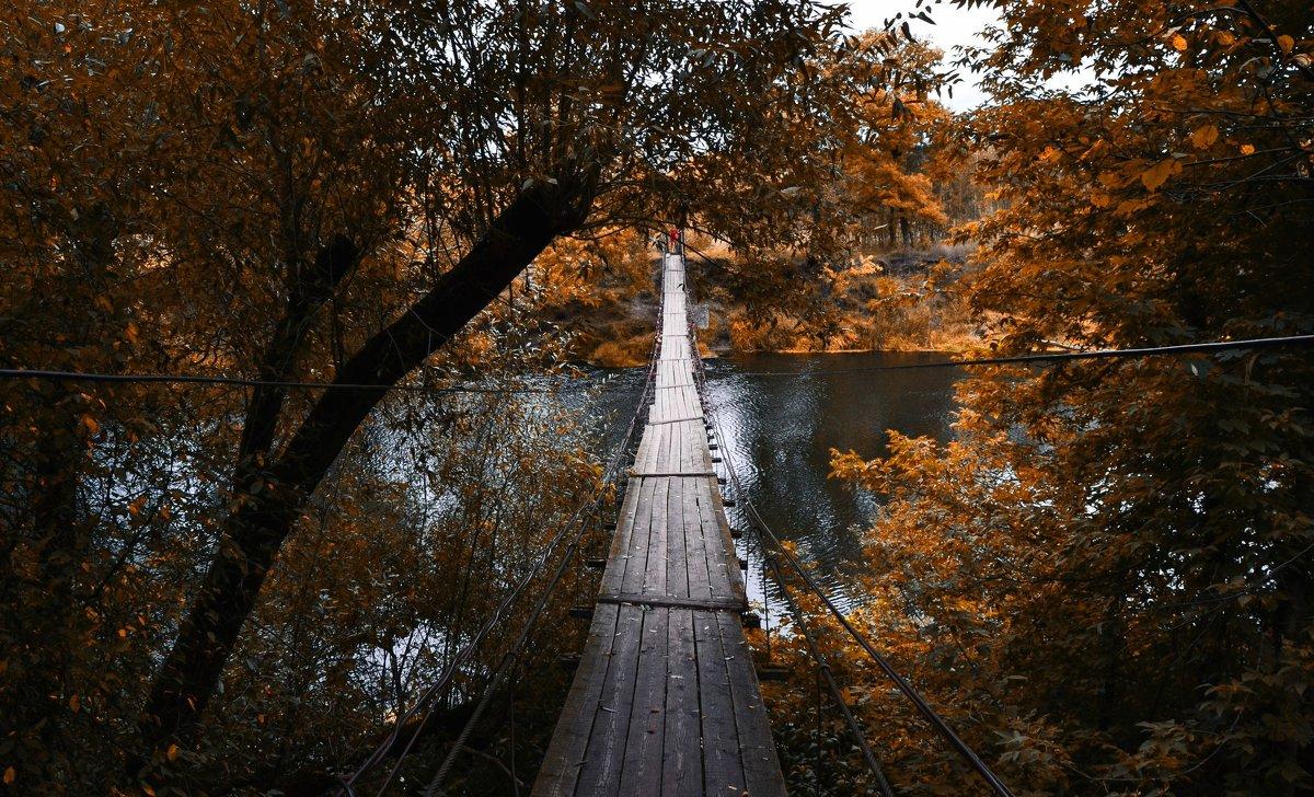 Подвесной мост в Хотылёво - Алексей Клименко