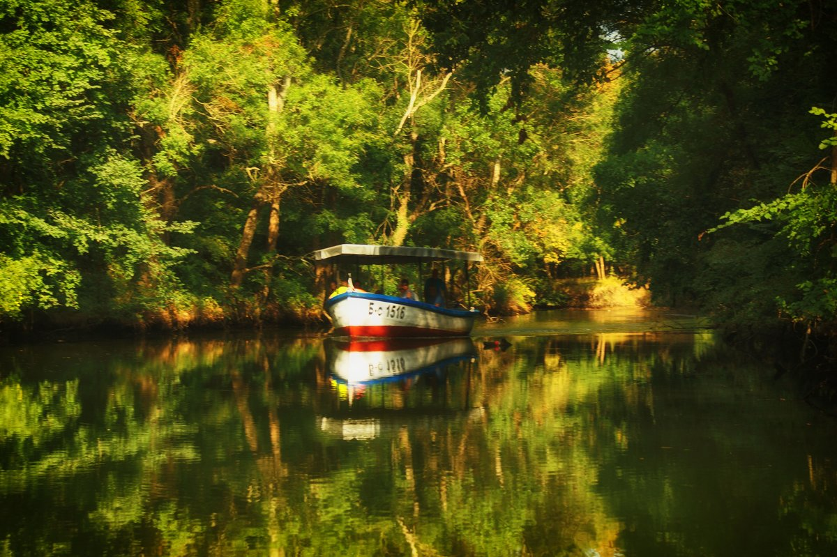 река Ропотамо - Екатерррина Полунина