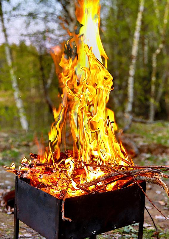 Тепло огня - Владимир