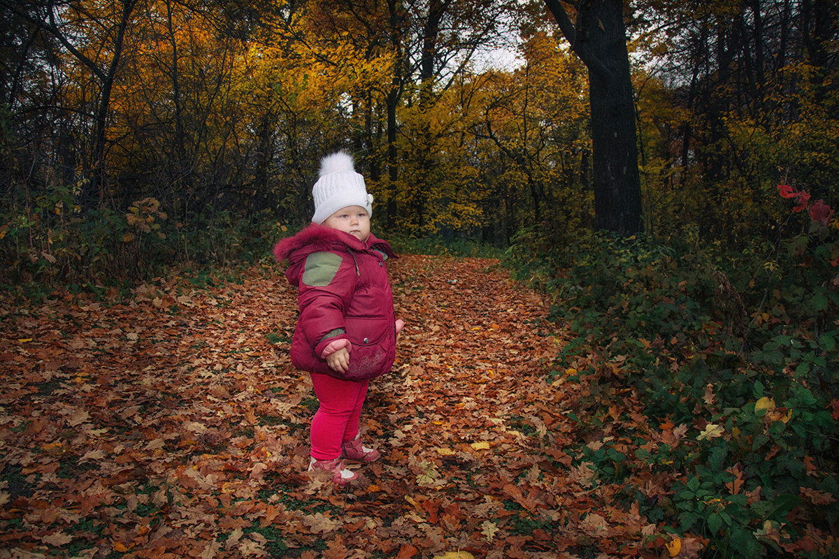 Прогулка в осеннем лесу - Ирина Демидова