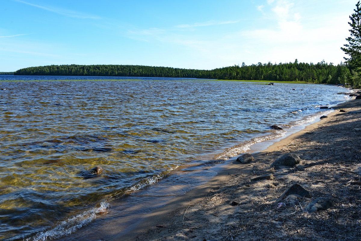 Озеро Поньгома - Владимир Брагилевский