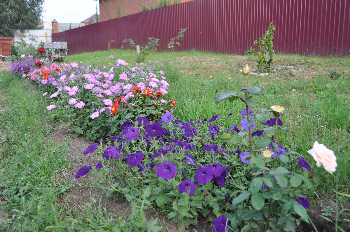 августовский сад - Tatyana Kuchina