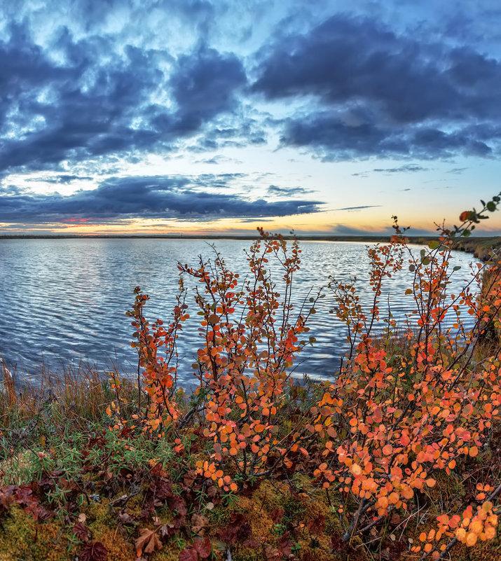 Осень в тундре - Николай Андреев