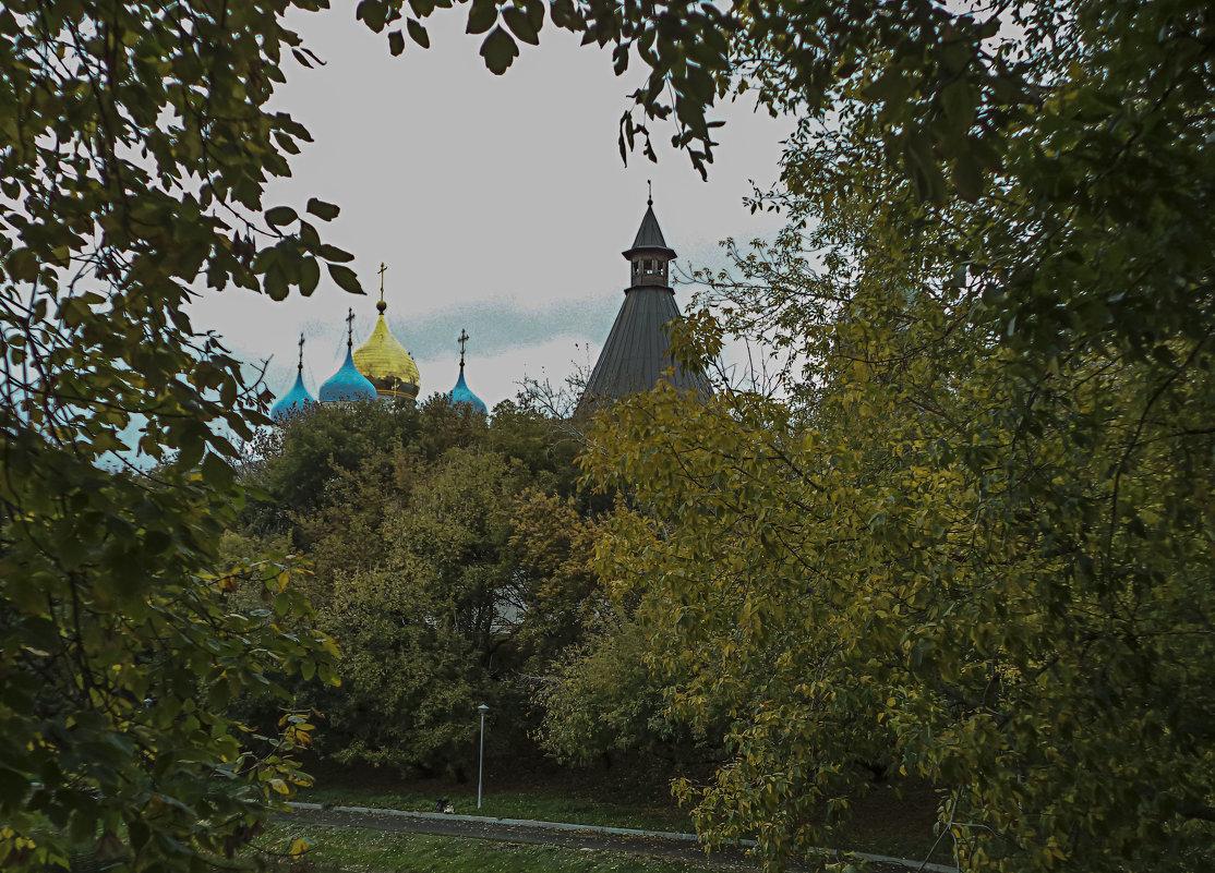 Новоспасский монастырь - Яков Реймер