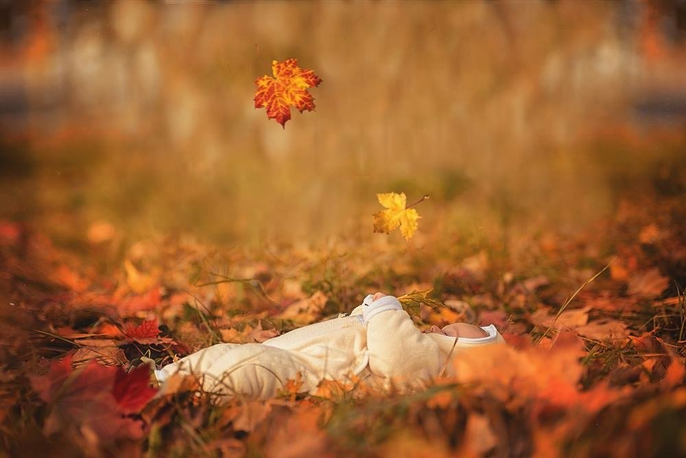 Первая осень - Виктория Дубровская