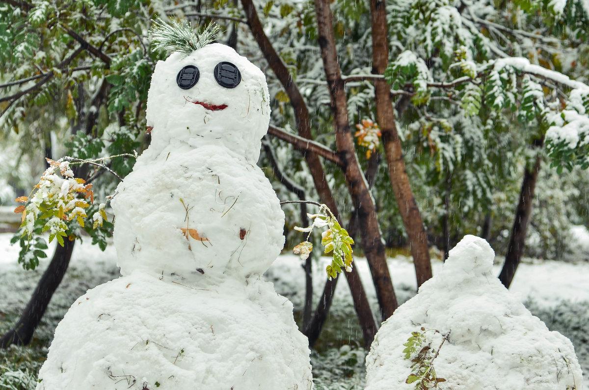 Полтора снеговика - cfysx