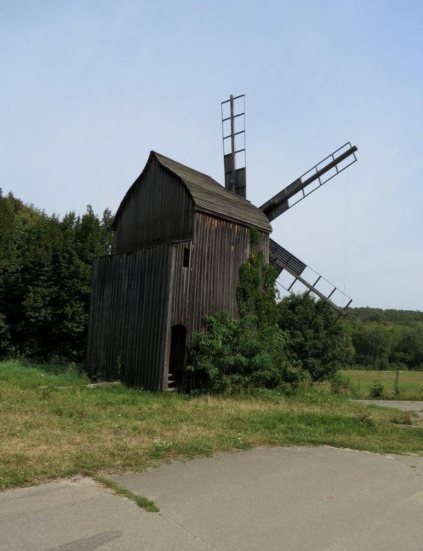 Старая мельница - Наталья Джикидзе (Берёзина)