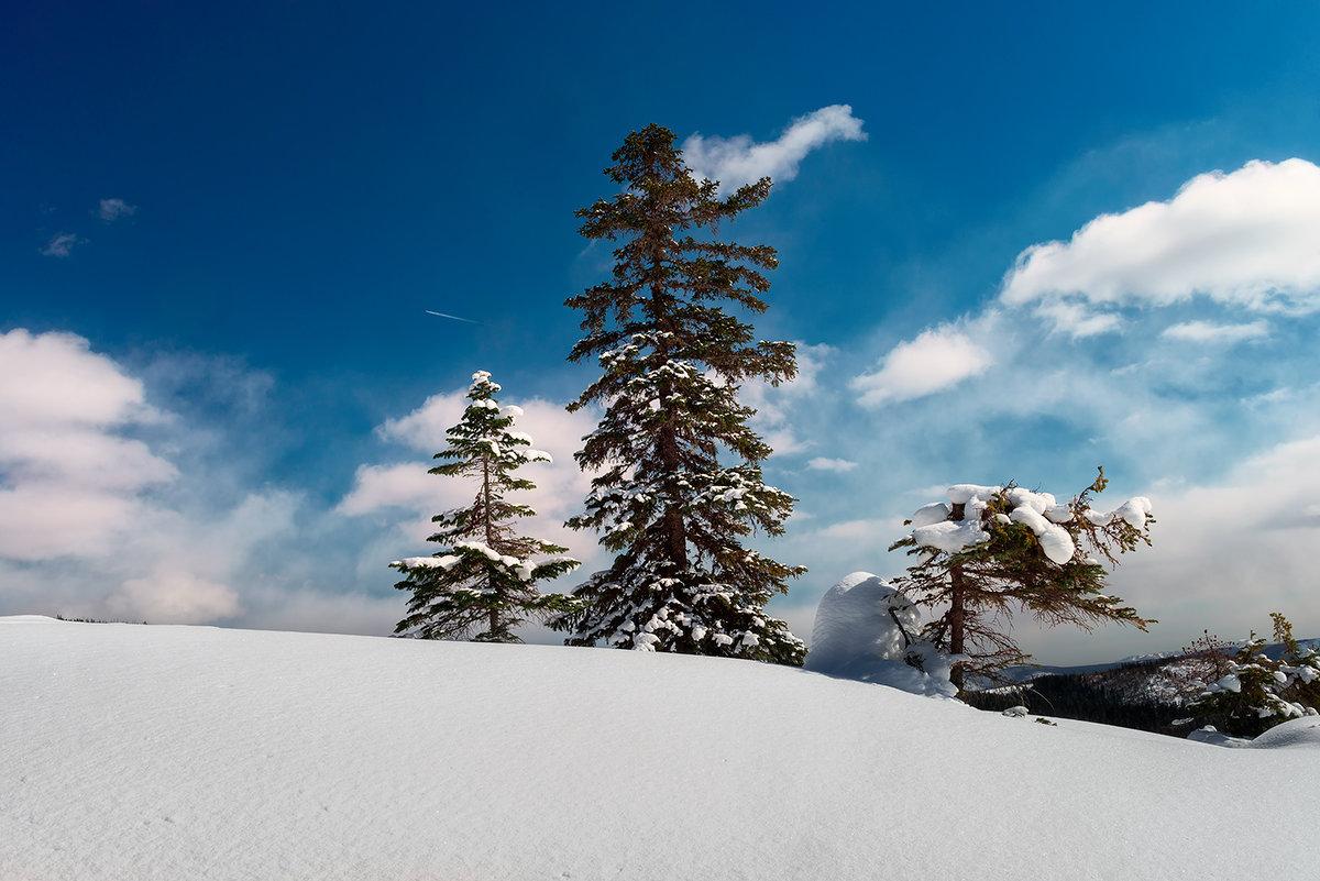 Зима - Поток