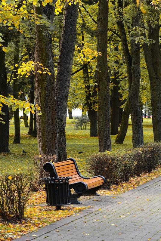 Осенний этюд. - Paparazzi
