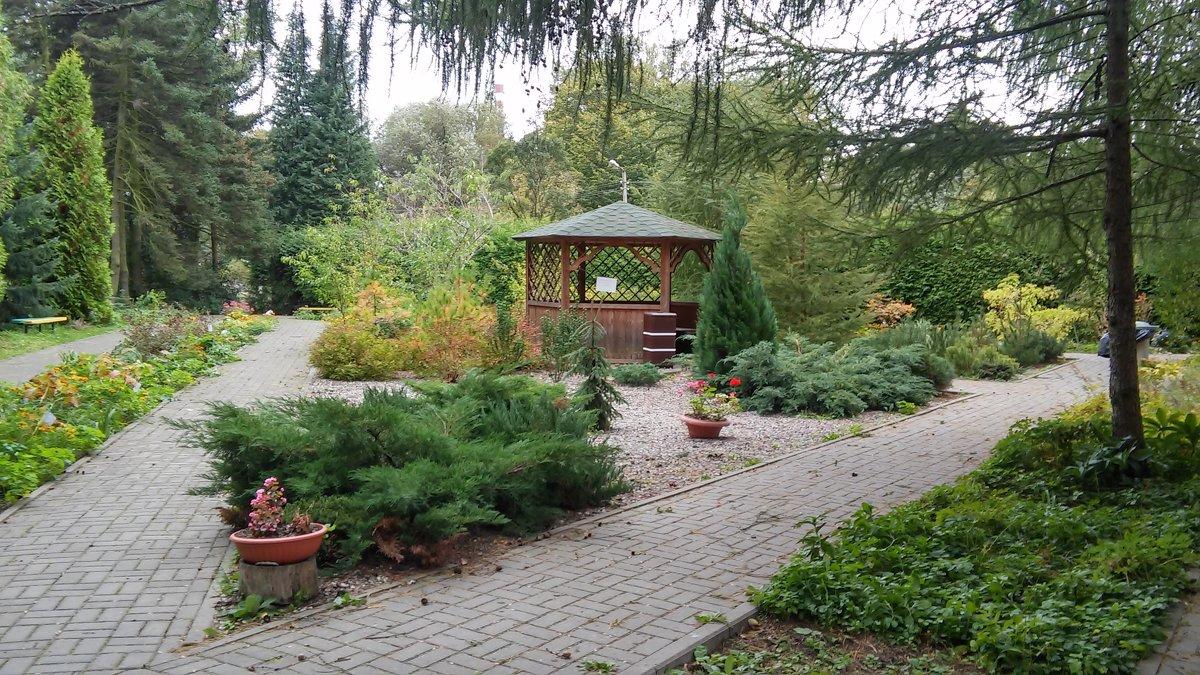 Дорожки Ботанического сада - Елена Байдакова