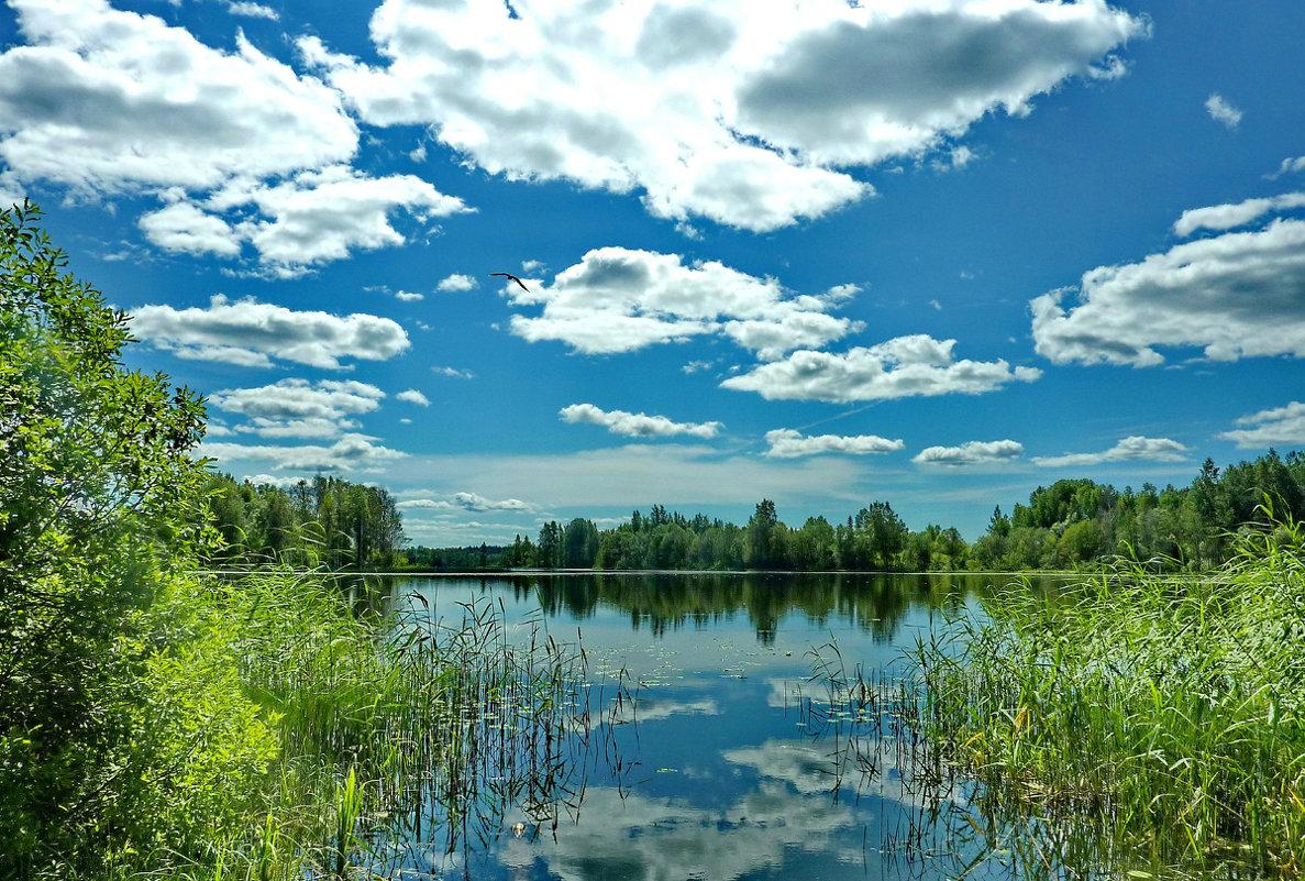Облака над озером - Валерий Талашов