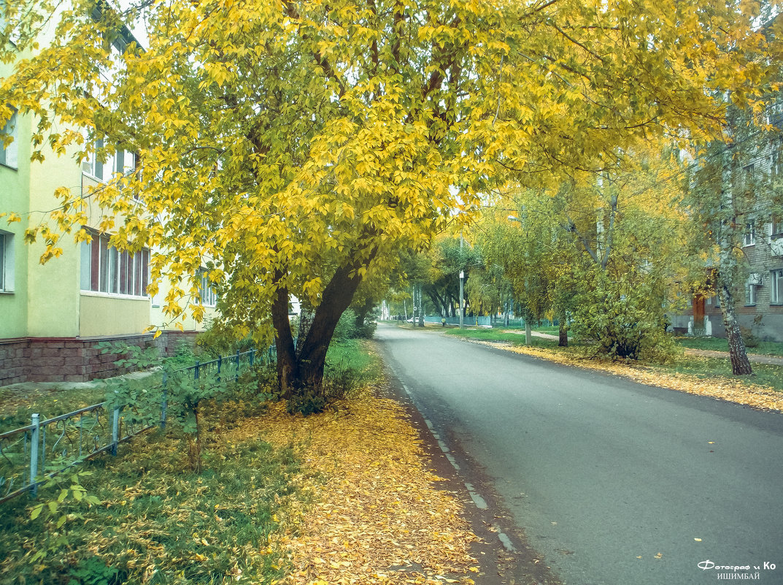Улица в желтом - Вячеслав Баширов
