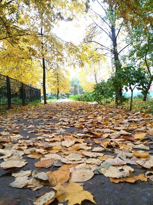 Autumn - Василиса