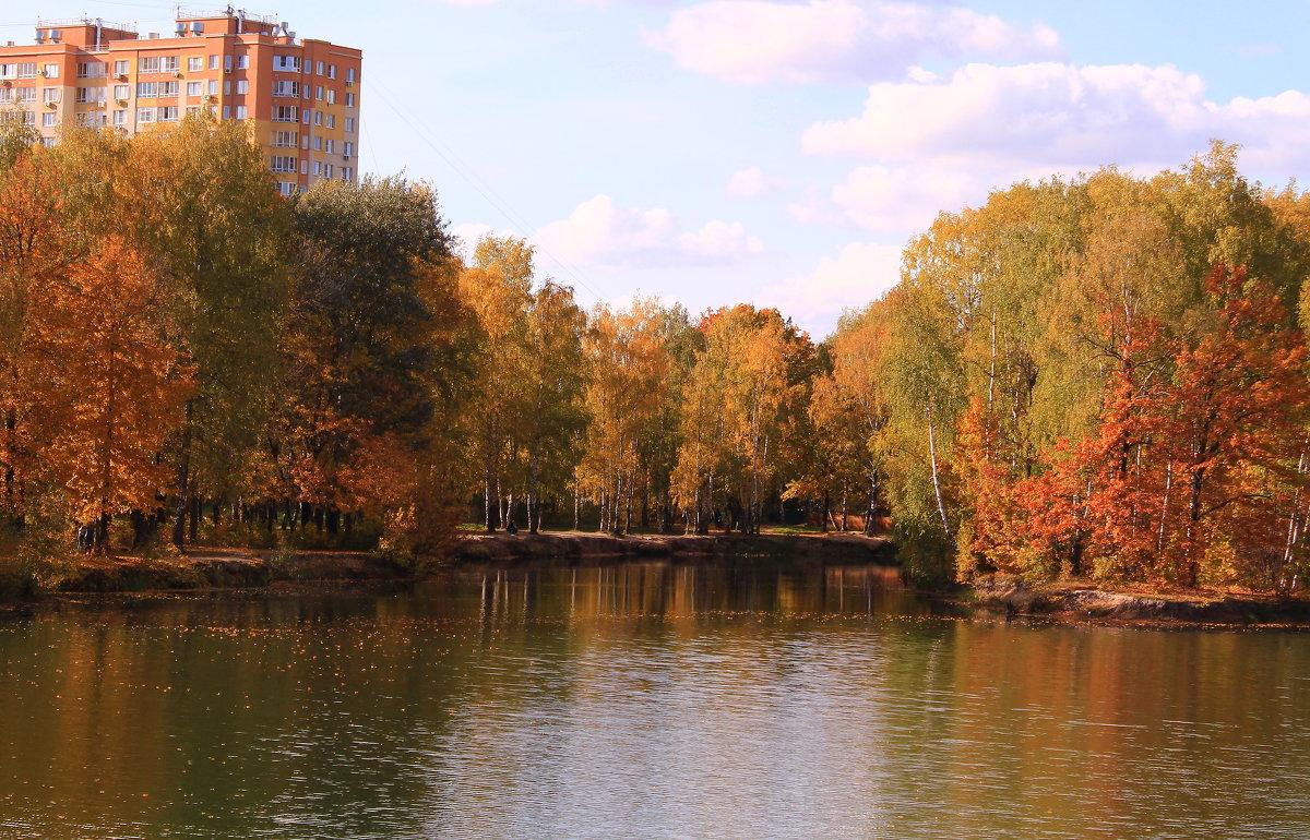 Октябрь в городе - Татьяна Ломтева