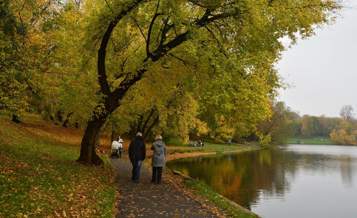 Осенняя прогулка - Анастасия Смирнова