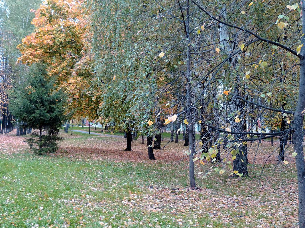 Осень в парке. - bemam *