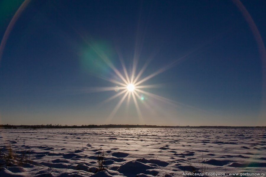 Белое солнце пустыни - Александр Горбунов