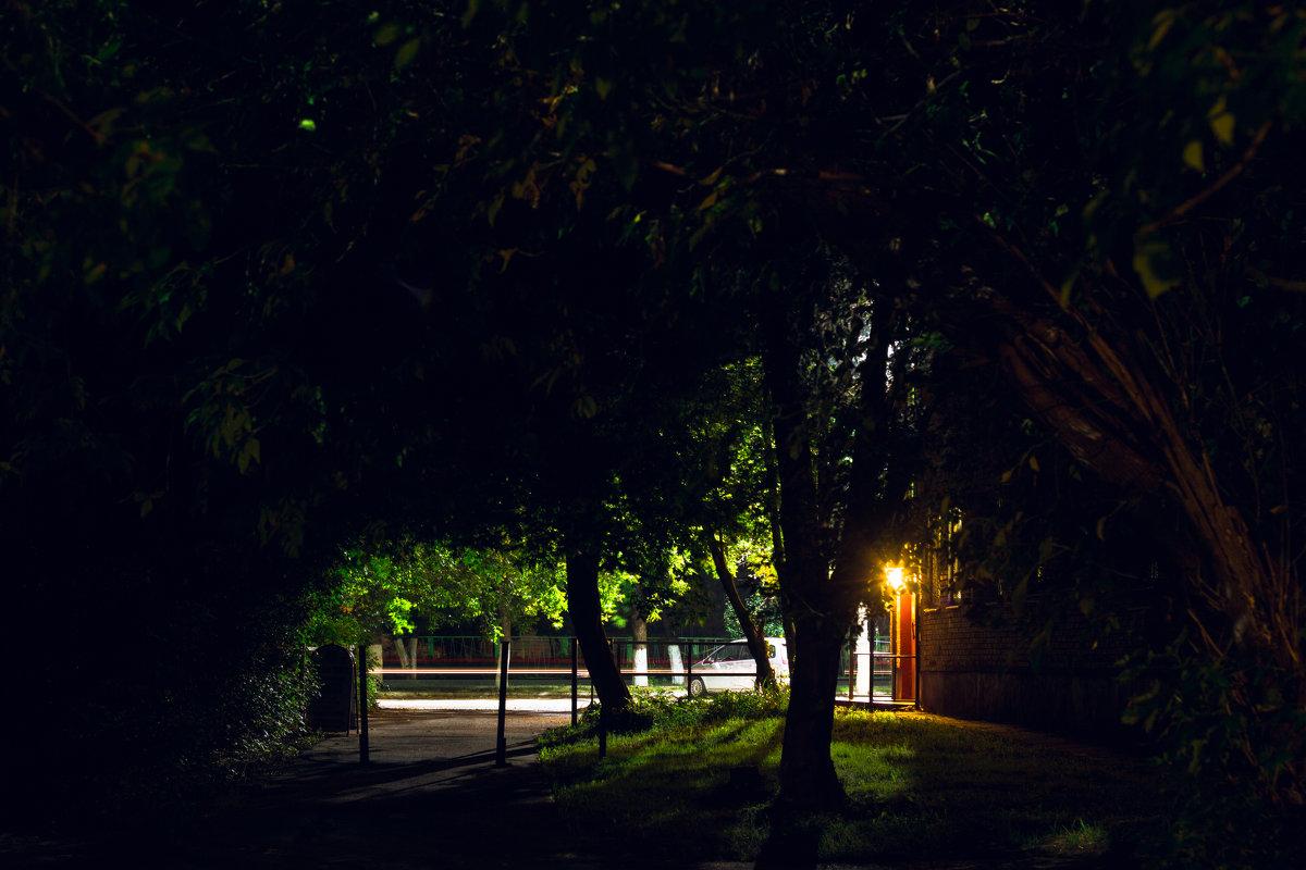 Ночь, улица, фонарь... - Julia Demchenko