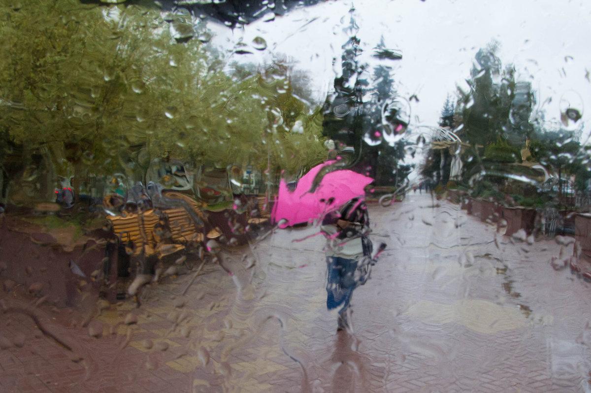 зонт - Lemura