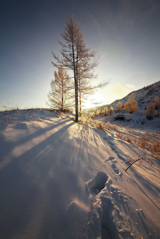На горы зимние, взор Ваш, пусть неутомимым будет 6 - Сергей Жуков