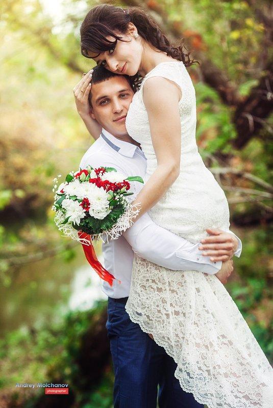 Свадьба Ивана и Ксении - Андрей Молчанов