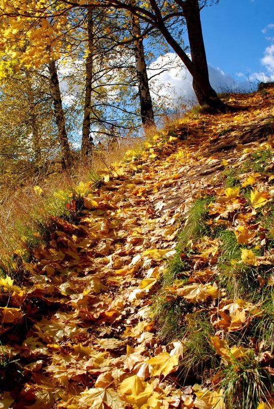 Осенняя пора - Валерий Толмачев