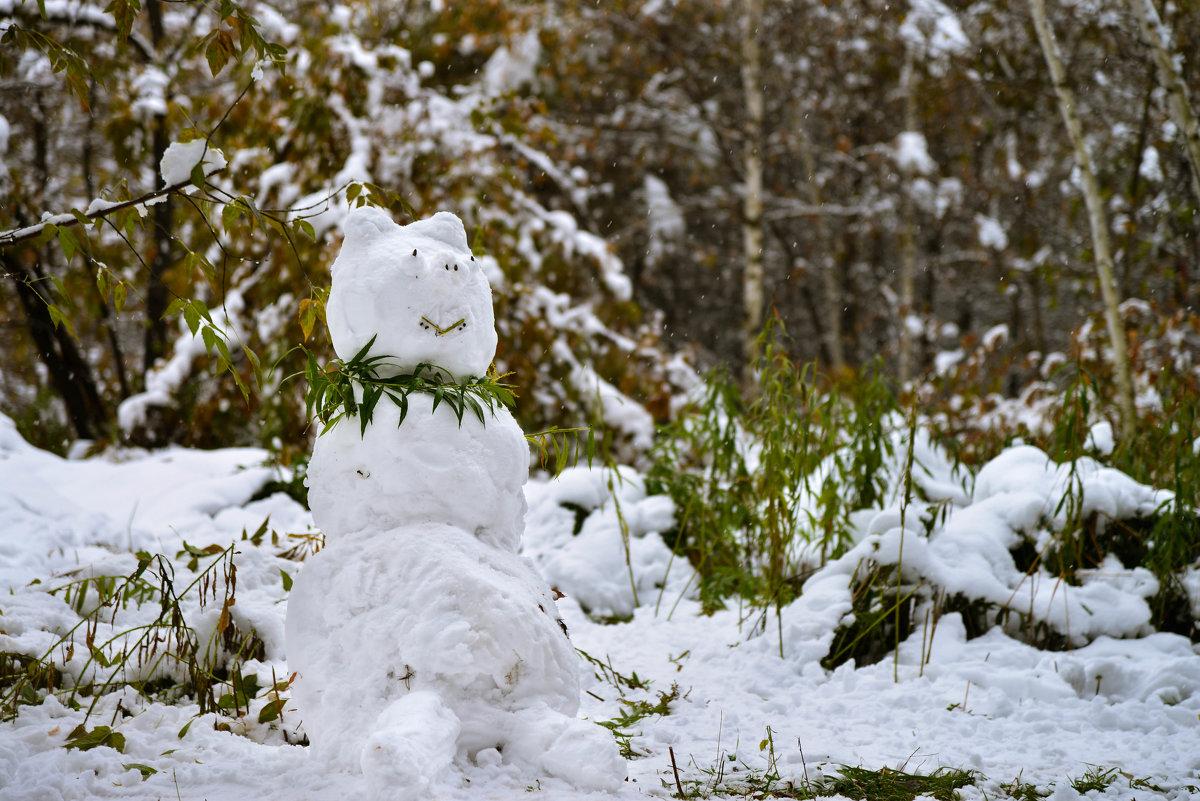 Гламурный снеговик - cfysx