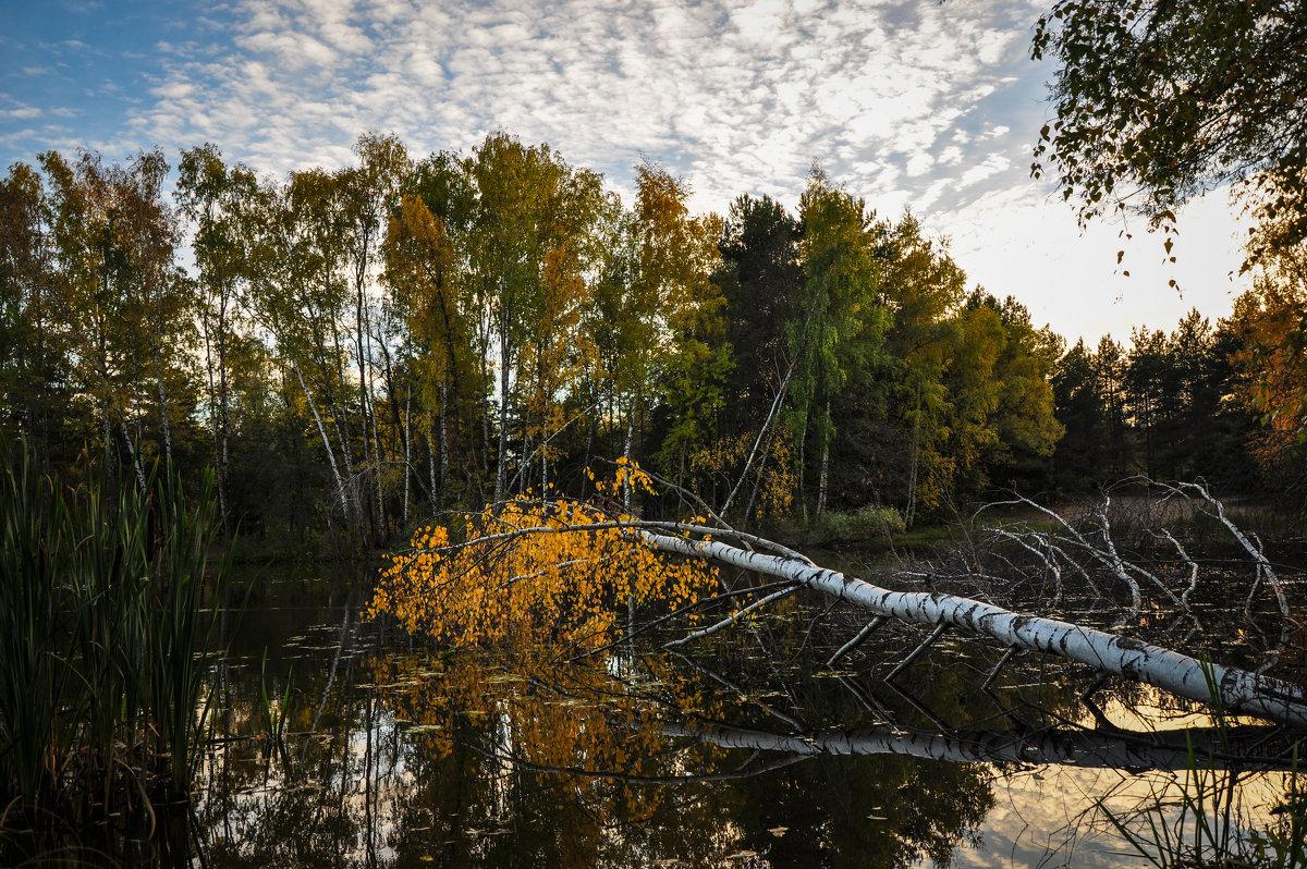 Осень - Alexander Petrukhin