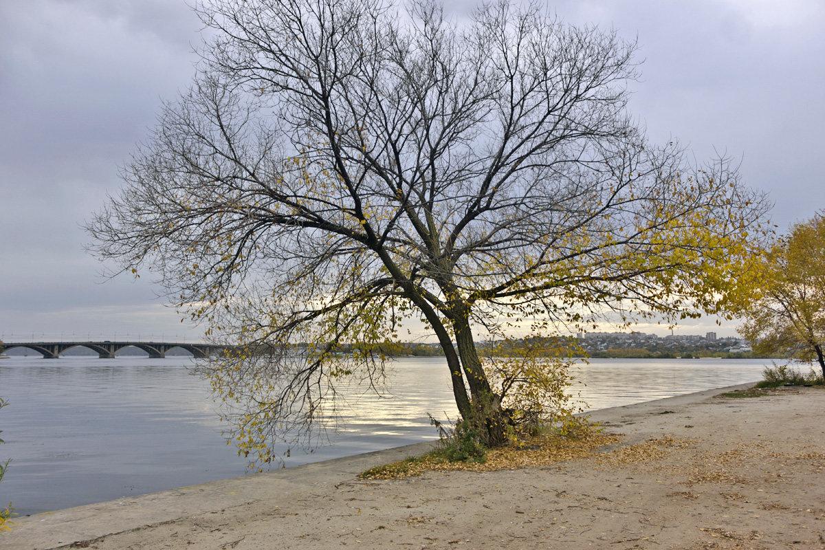 осень 3 - Геннадий Свистов