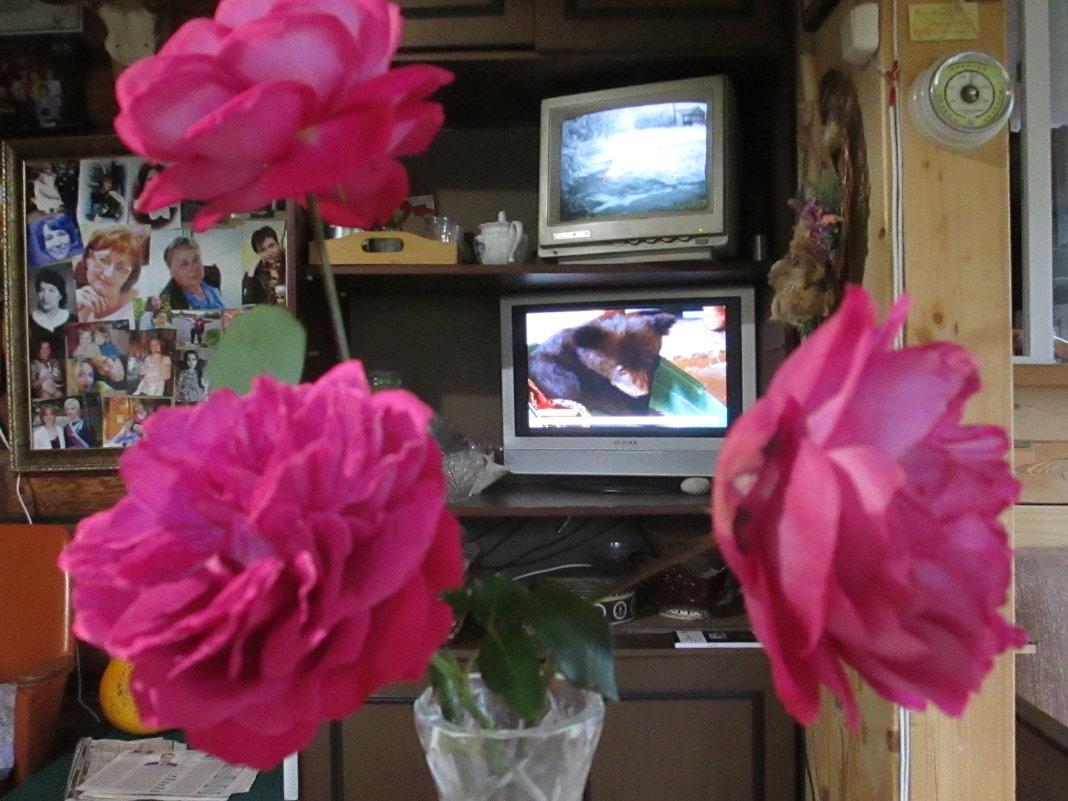 розы в октябре - Леонид Виноградов