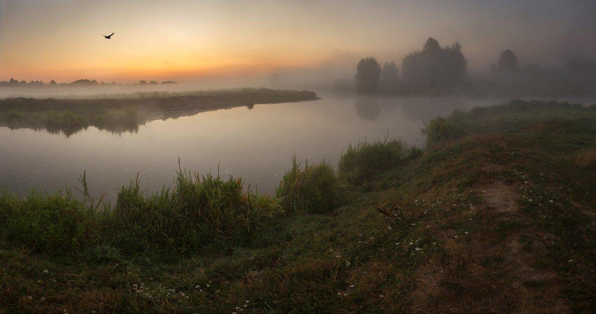 Раннее утро - Elu Sepp