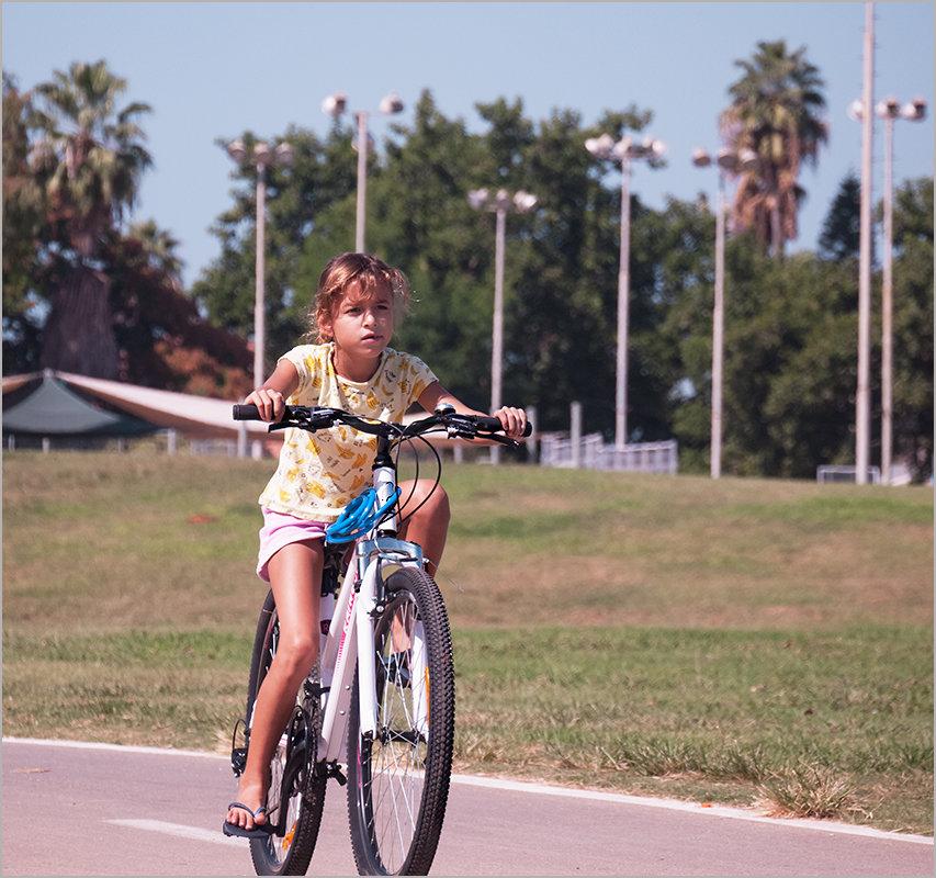 Мир велосипеда-5 - Lmark