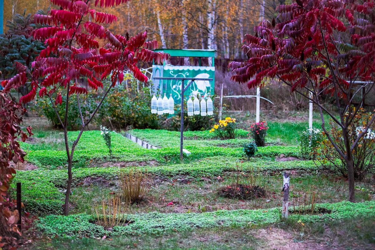 Работа в осеннем саду. - Валерий Гудков