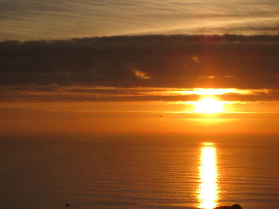 Закат на океане - Елена Безнасюк