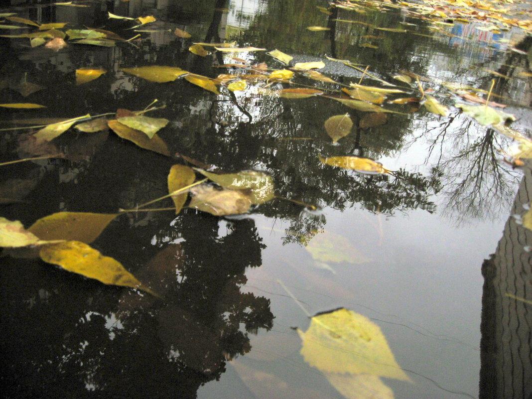 После осеннего дождя - Татьяна Литвинова