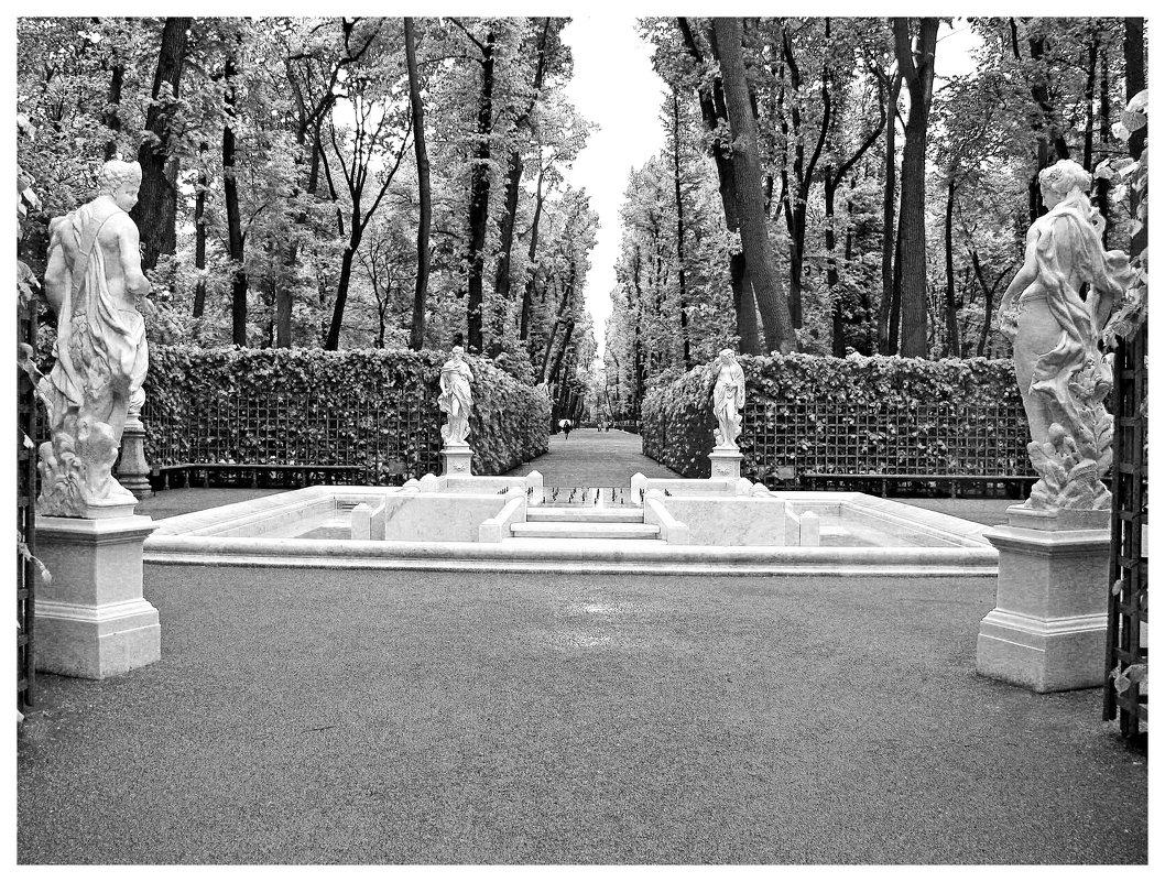 Летний сад - Наталья