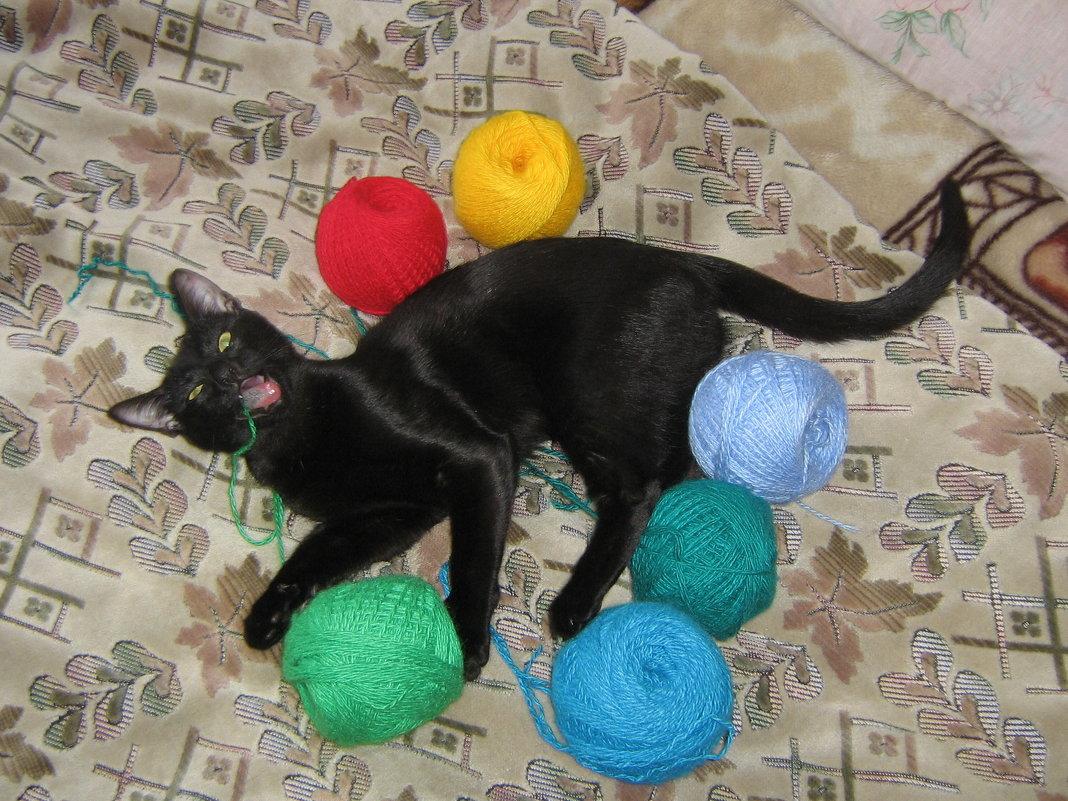 Кошка и клубочки - Татьяна