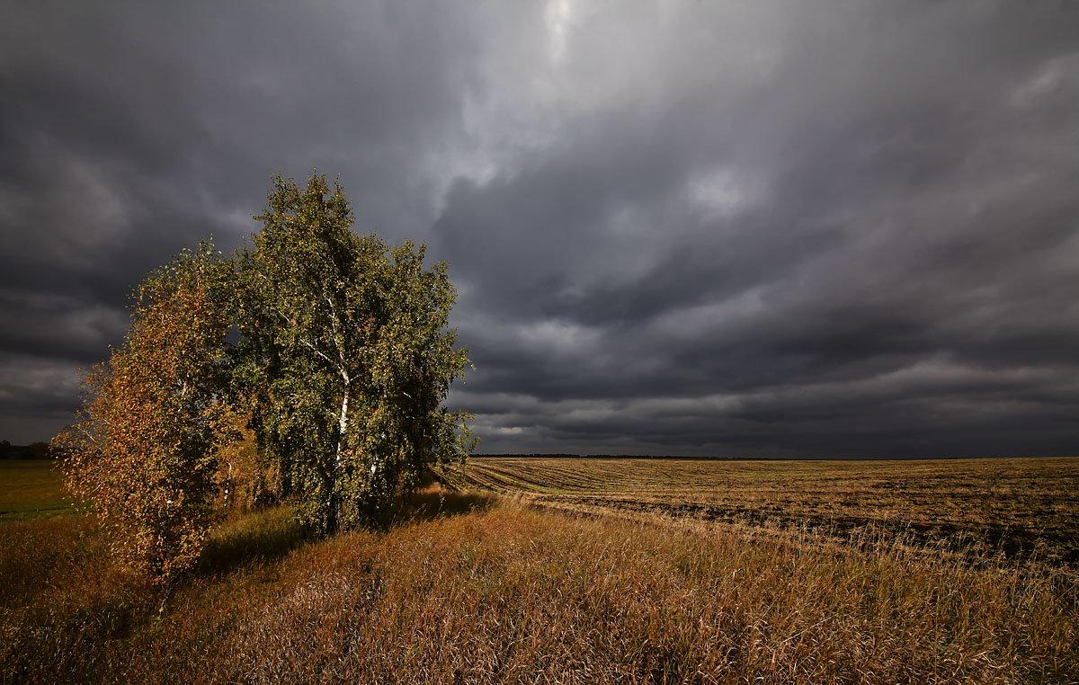 И слышатся песни, осени снежной 1 - Сергей Жуков
