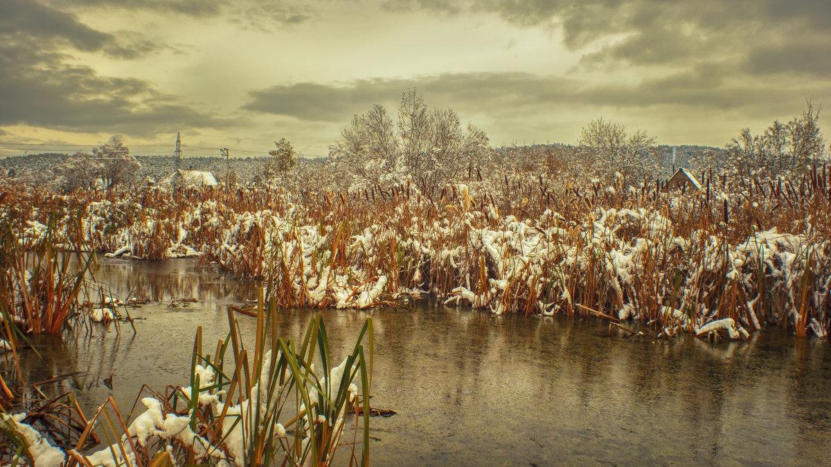 Камыш под снегом - Вадим Губин