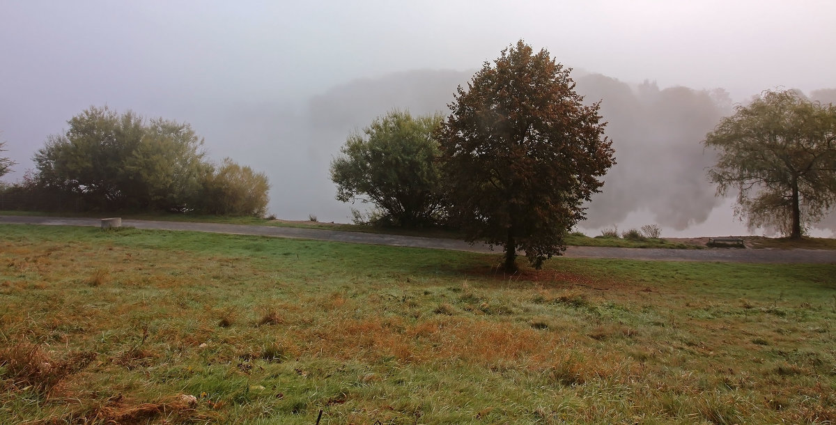 А на озере туман - Alexander