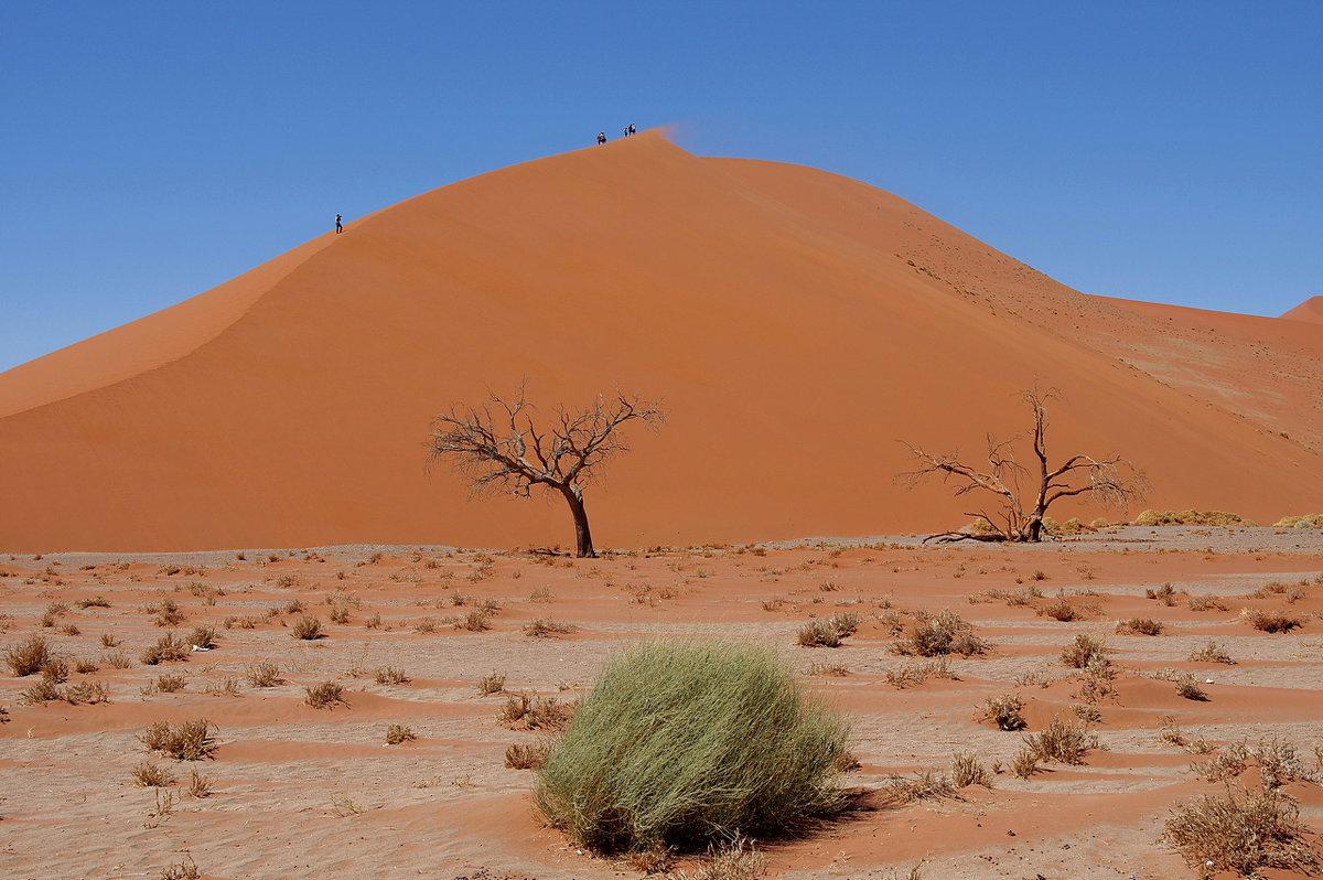 Намибия.Пустыня.Дюна 45 - Михаил Рогожин
