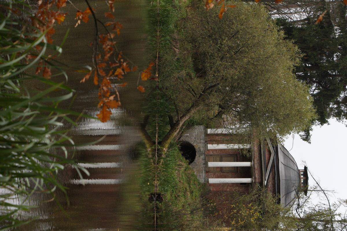 Осень в Приютино - Надежда Ёздемир