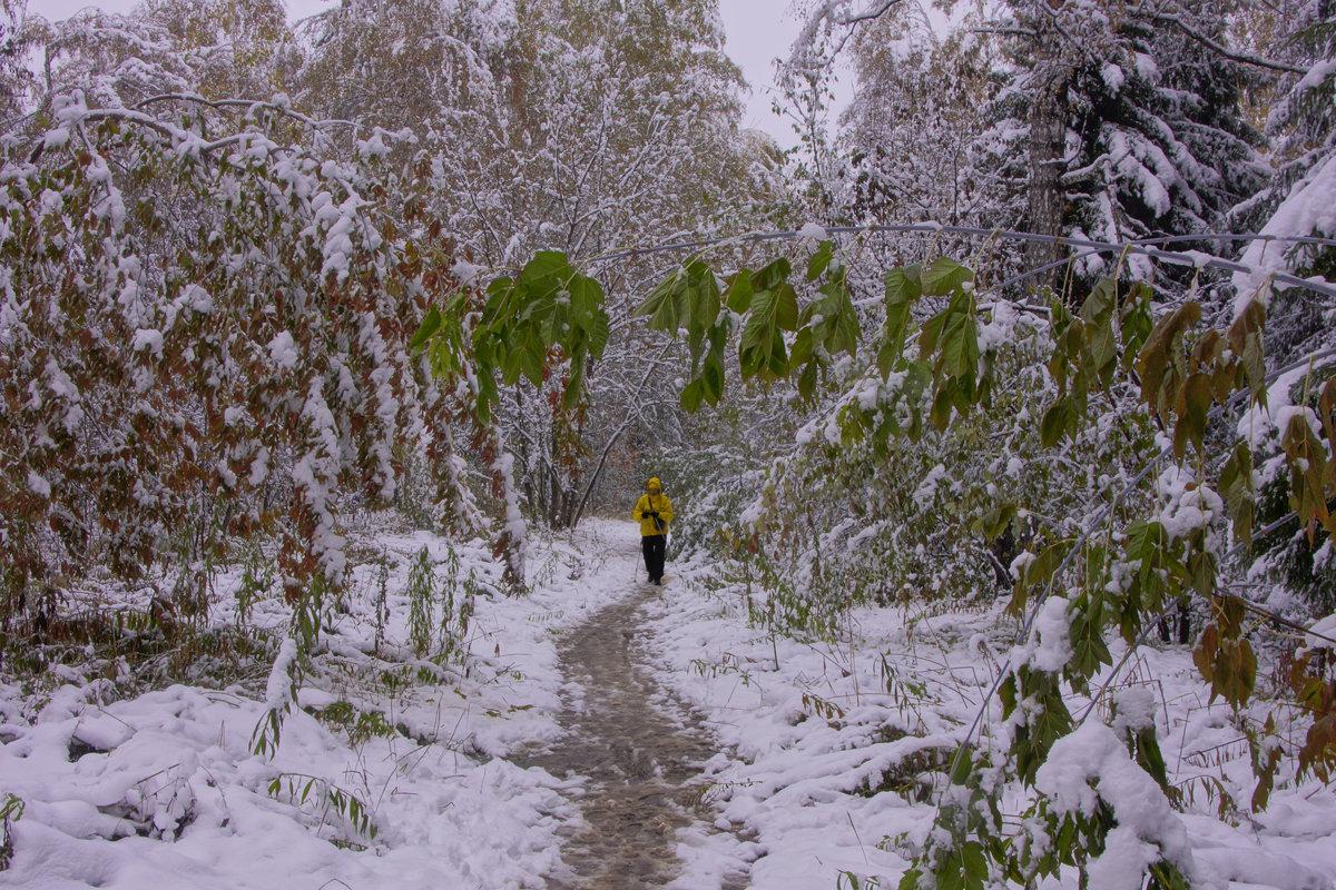 Первый снег---08 - Владимир Холодный