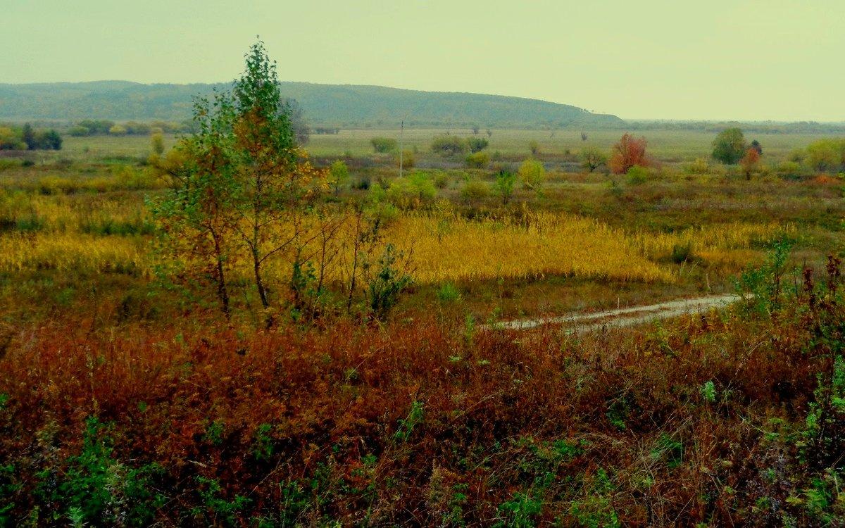 Осенние сумерки - Милла Корн