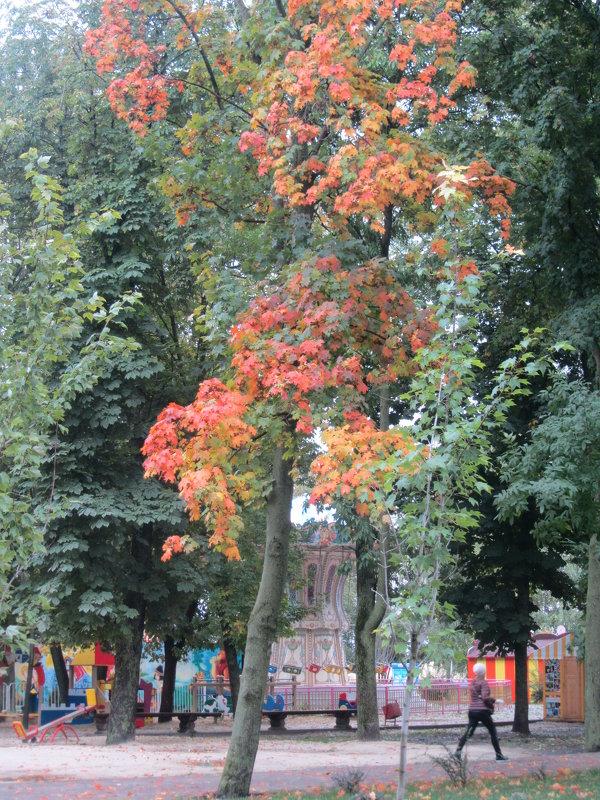 Осень - Герович Лилия