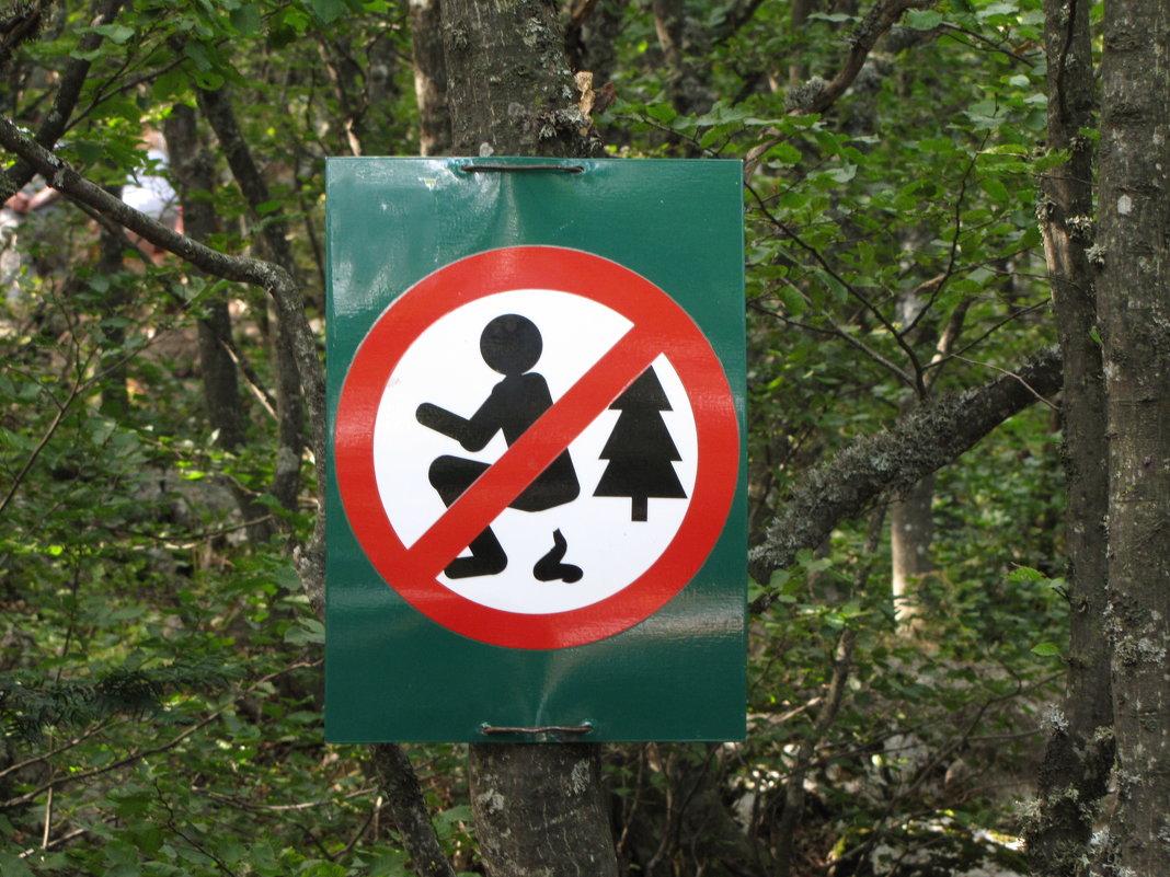 Осторожно! Может укусить змея! :-)))) - Павел Н