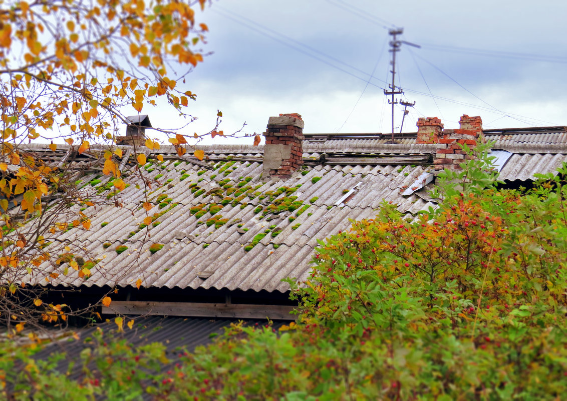 Крыша старого дома. - Алена Малыгина