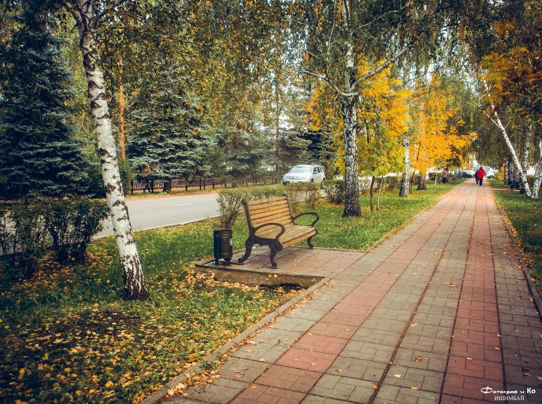 На аллее - Вячеслав Баширов